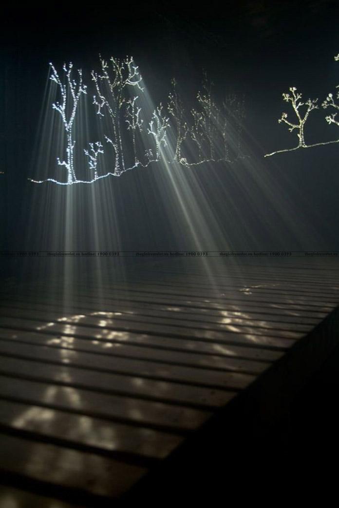 Cấu tạo đặc biệt của rèm lọt sáng