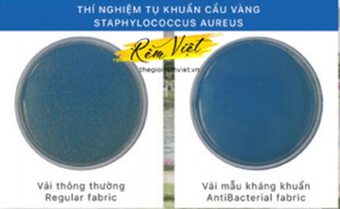 So sánh chất liệu vải thường và vải kháng khuẩn