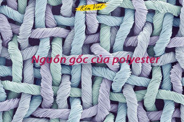 Nguồn gốc của polyester là gì